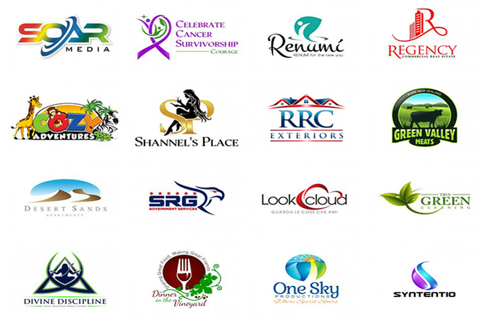 Professional Logo Design by The Logo Company