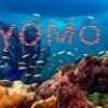 yomoore