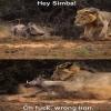 Simba99