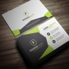 BusinessCards07