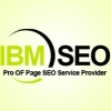 Ibmseo321