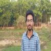 Sharan980