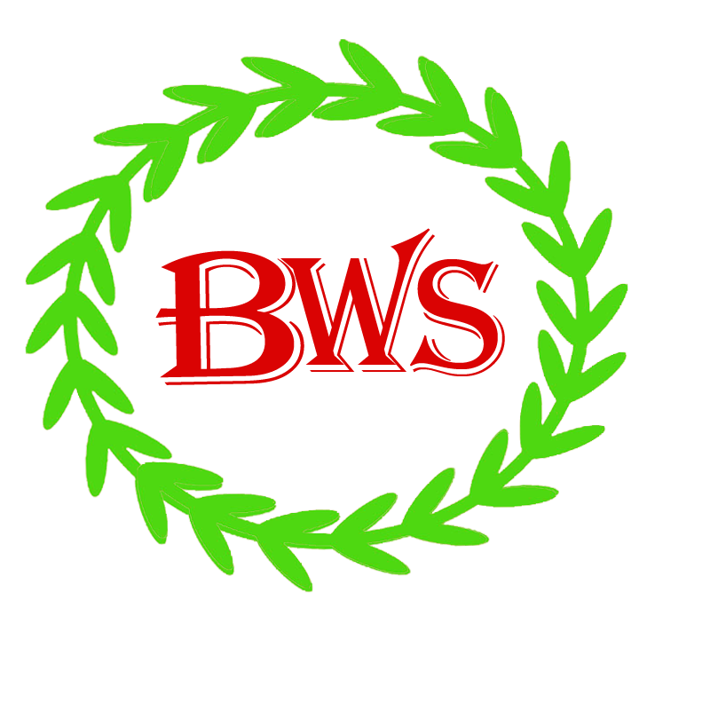 baywebservices