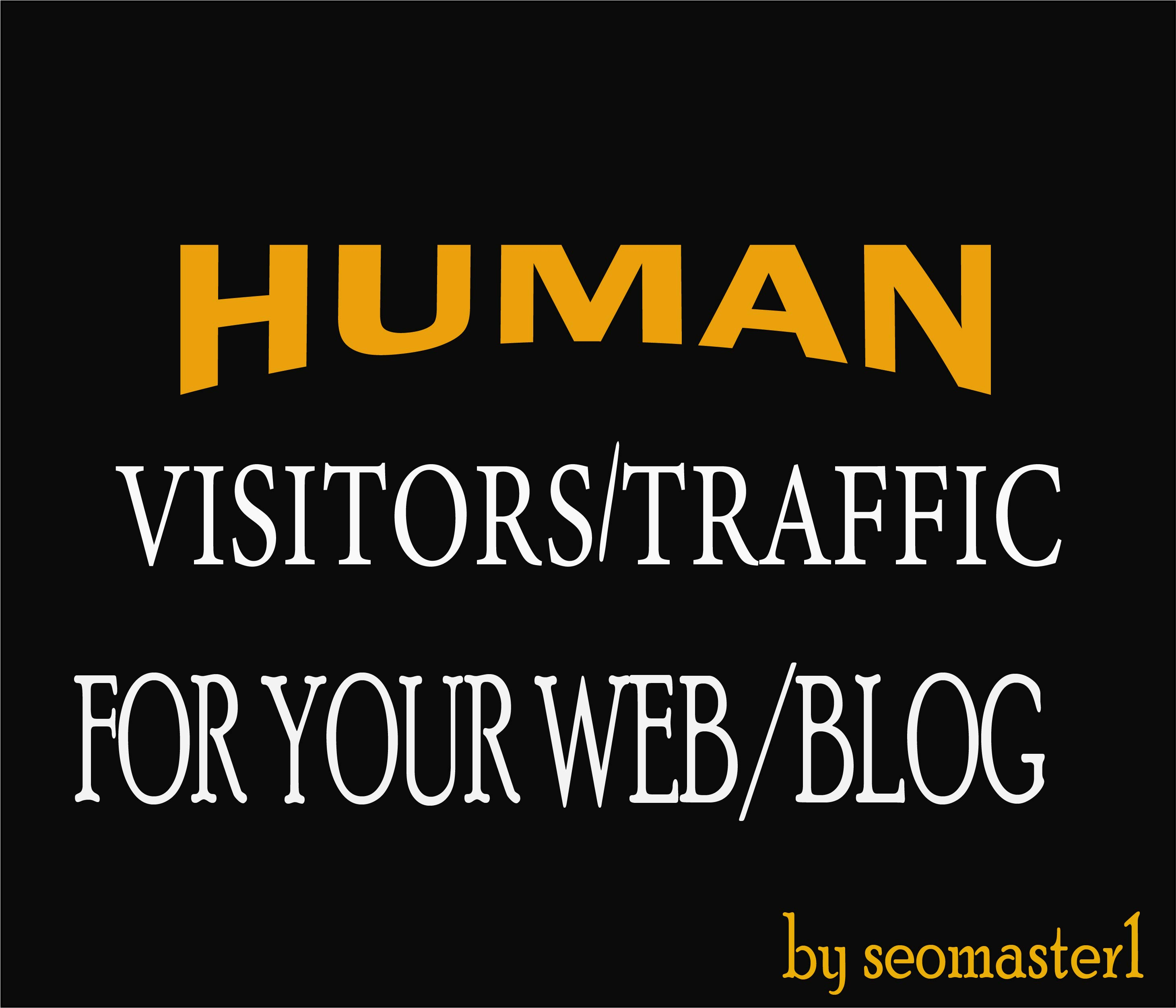 8000 Human visitors/traffic to your Web/Blog Adsense safe and get Good Alexa rank