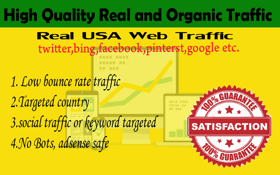 20000 Human USA Targeted traffic to your web or blog site. Get Adsense safe and get Good Alexa rank