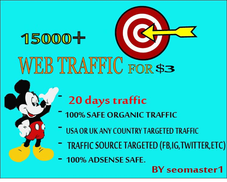 15000 Human Targeted visitors/traffic to your Web/Blog Adsense safe and get Good Alexa rank