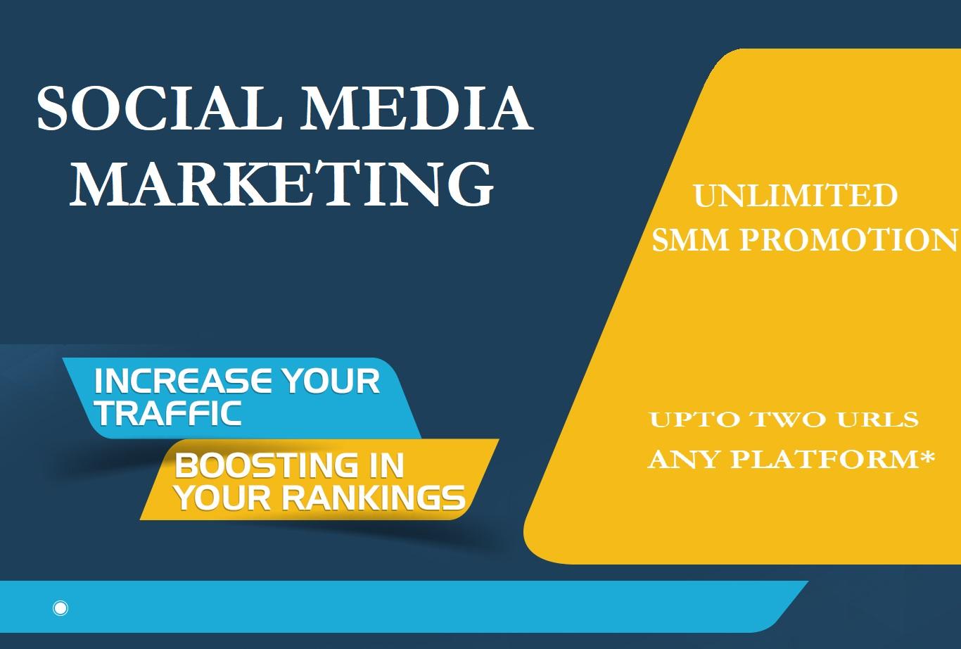 Social Media Marketing Any Platform Superfast and Effective Reach
