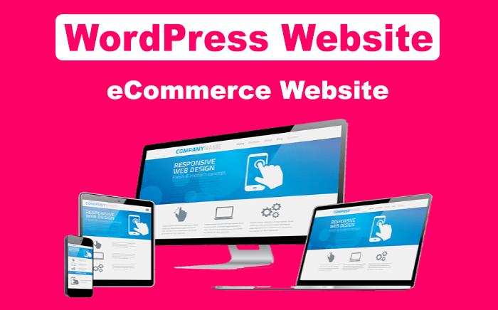 Build Professional WordPress website and eCommerce website