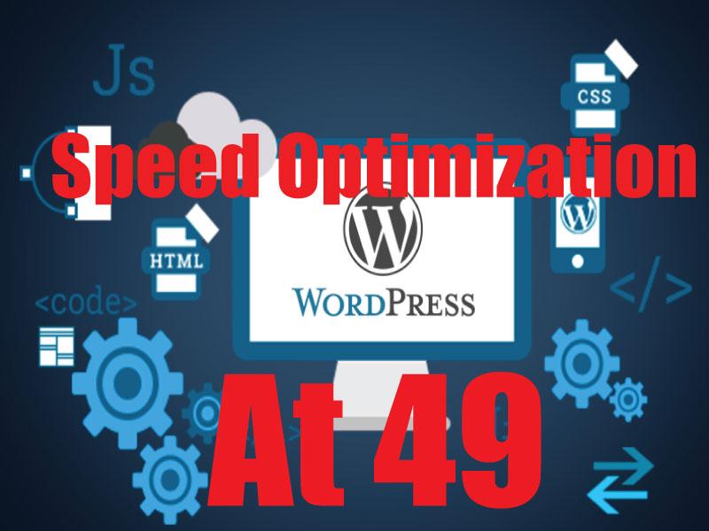 WordPress or Shopify Website Speed Optimizations