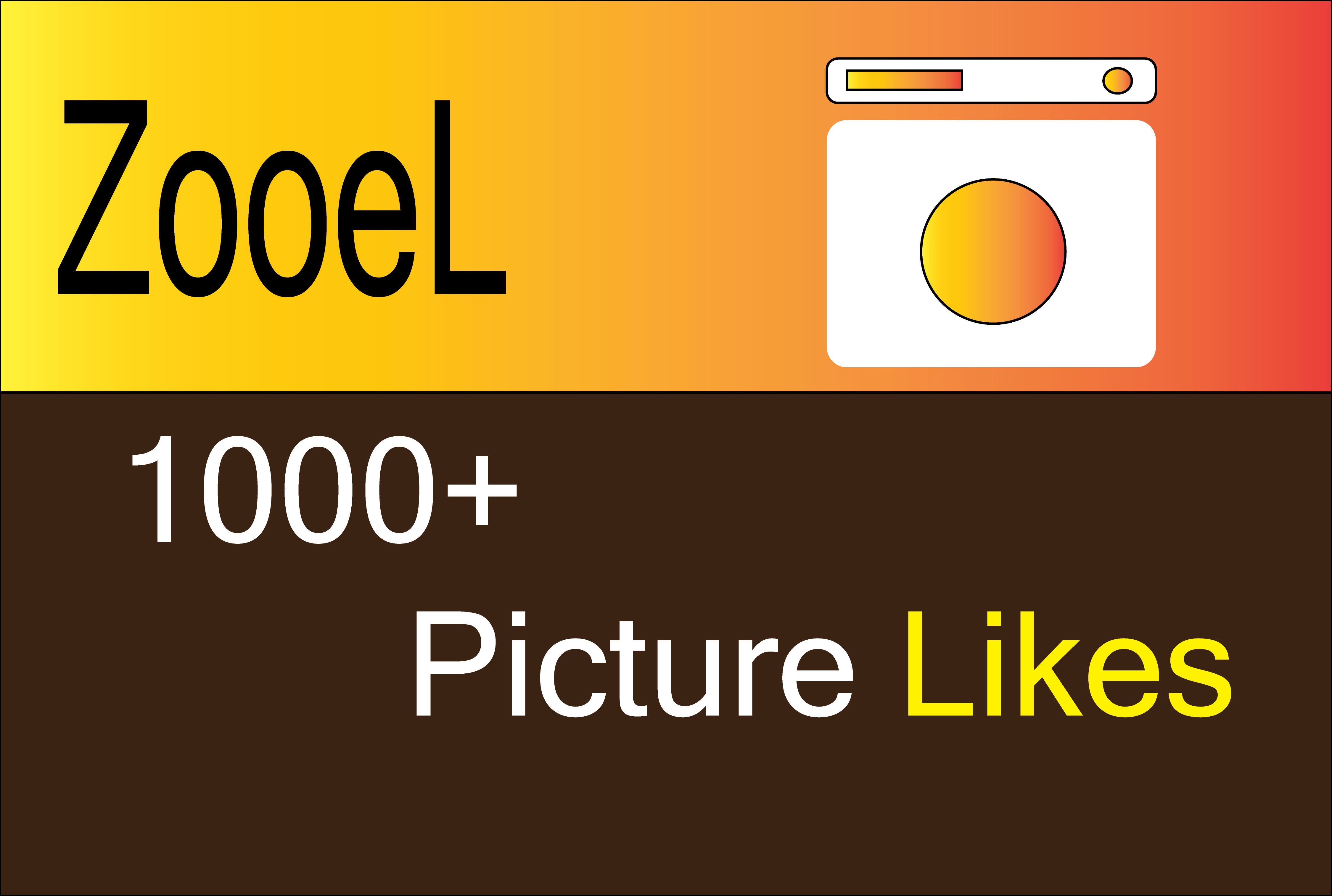 Picture Promotion HIGH QUALITY split max 10