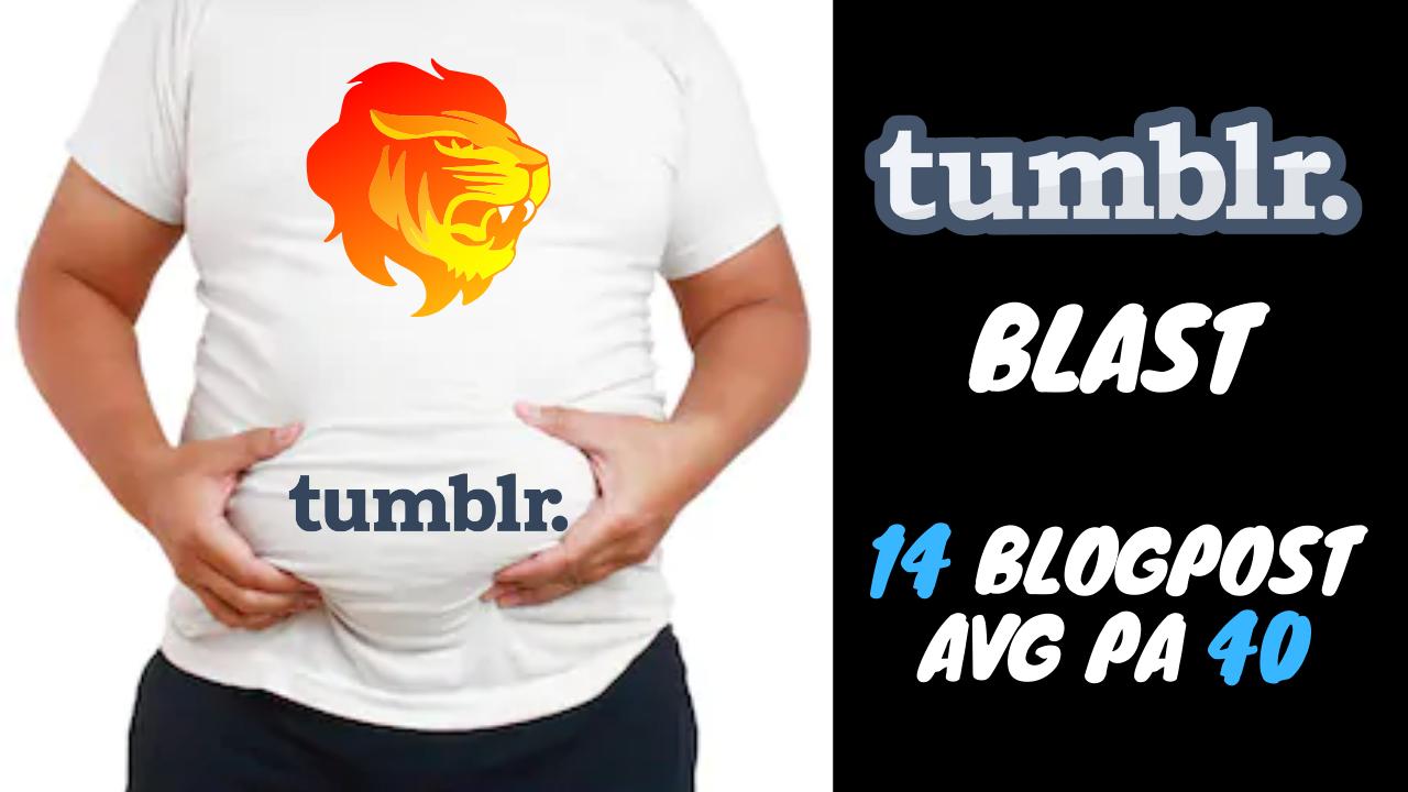 I Will Do a Tumblr Blast 14 Blogpost Avg PA 40 Moz Trust Avg 3.5
