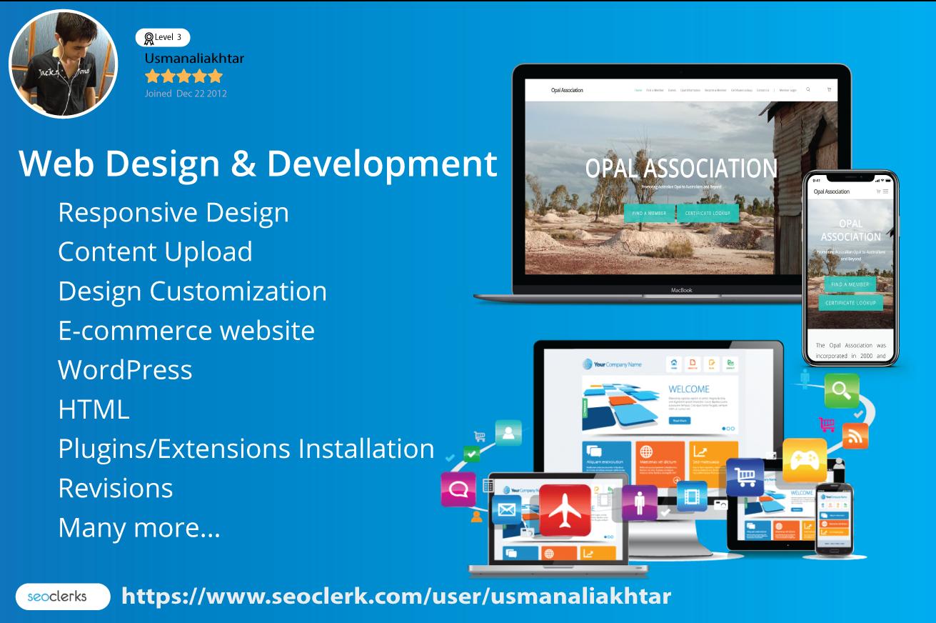 Wordpress Web Developer And Website Designer