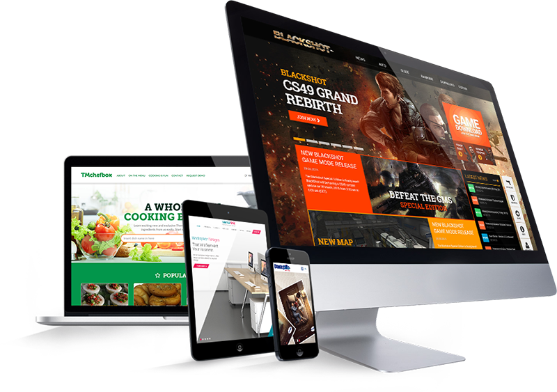 I will design your business website