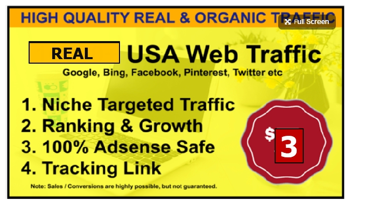 drive niche related targeted traffic to your ebay,  amazon,  shopify stores