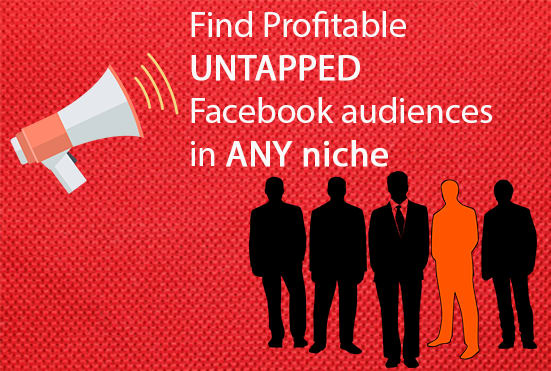 I will research super targeted audience for your facebook ads