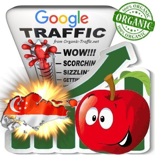 Singaporean Search Traffic from Google. com. sg with your Keywords