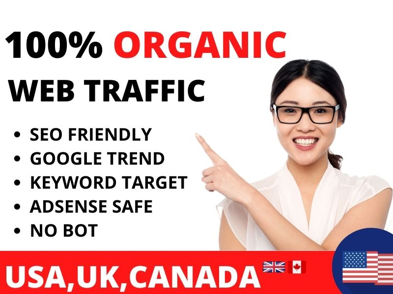 web traffic organic web traffic USA web traffic