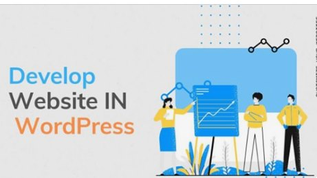 customize and develop a responsive wordpress website