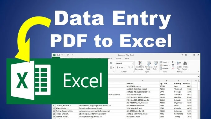 I will do data entry from PDF file to excel