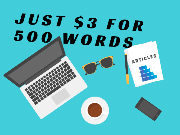 500 Words SEO Article or Blog Post