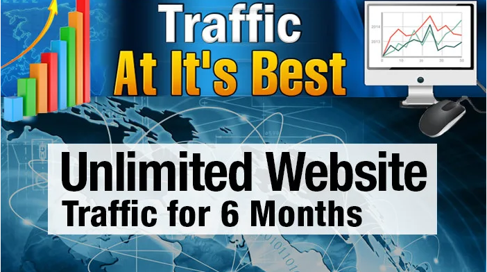 I will targeted real human website traffic for 6 months