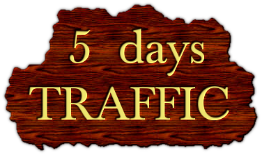 5 Days Live ORGANIC Unlimited Traffic with EXTRAS