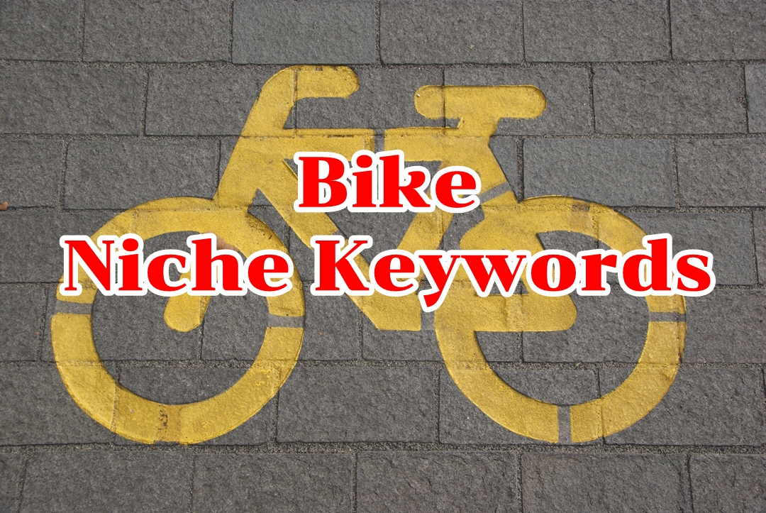 3 Niche keywords Bike USA 2020 Instant Download