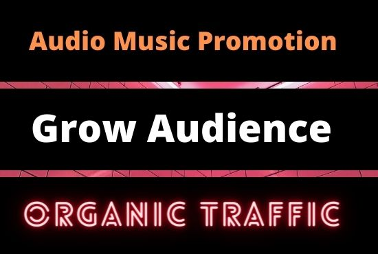 Get Music Promotion and Organic traffic on your audio track