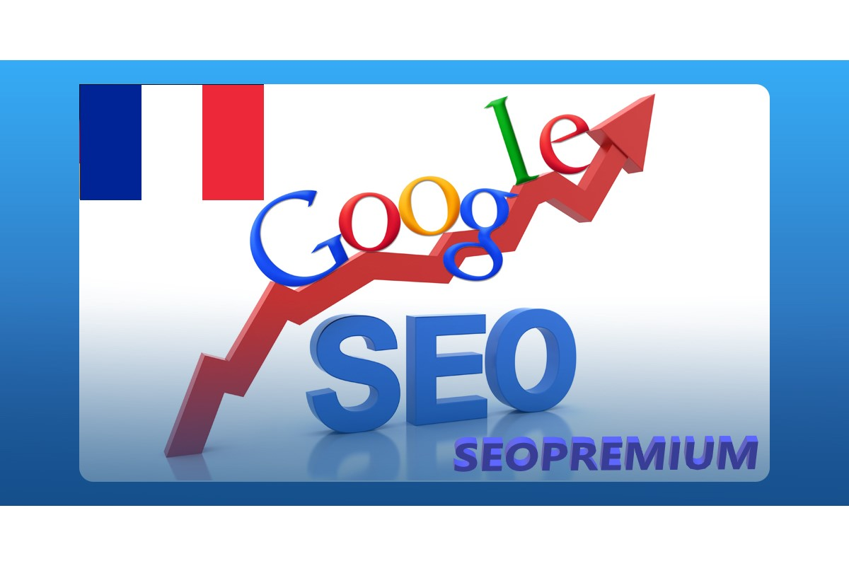 7500 FRANCE Real Google keyword traffic