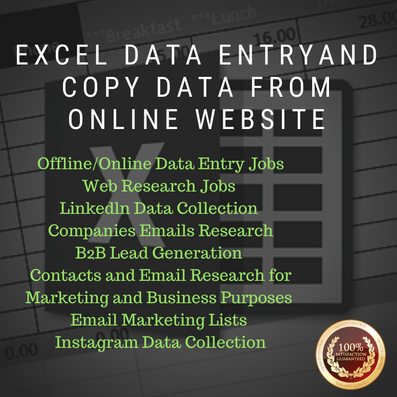 Excel Data Entry And Copy Data From Online Websites
