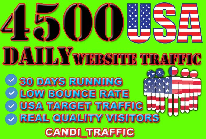 drive usa targeted website traffic for 30 days