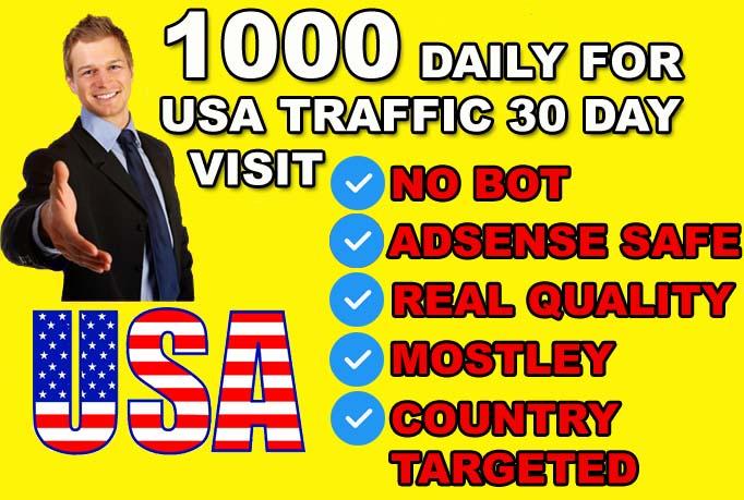 super targeted usa website traffic visitors