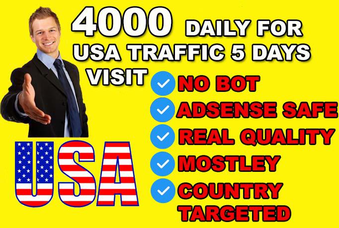 Drive organic usa real target website traffic visitors