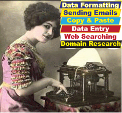 Can do data entry carefully 5 hours