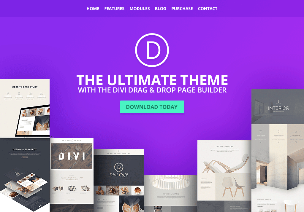 I will provide and install Divi theme for WordPress