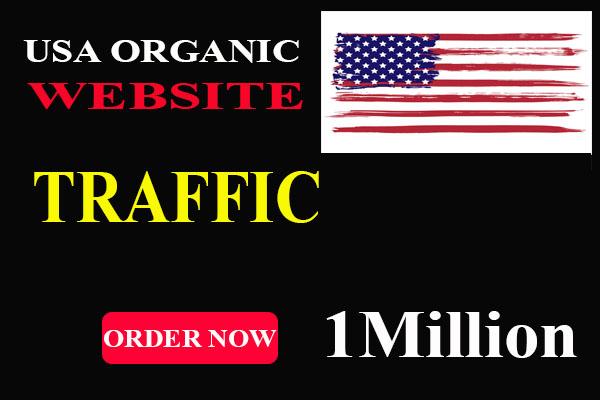 Get 1 Million 1,000,000 USA Website Traffic Within 10 Days