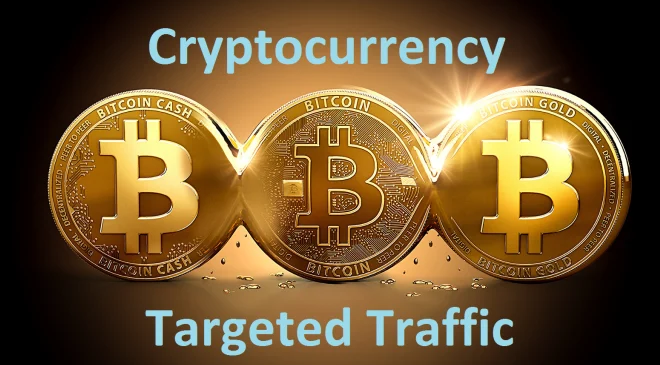 TWO Month Unlimited USA Targeted Organic Crypto Currency Bitcoin Website Traffic