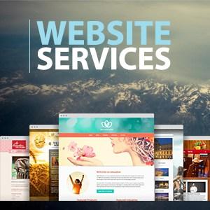 Custom Website Design and Hosting
