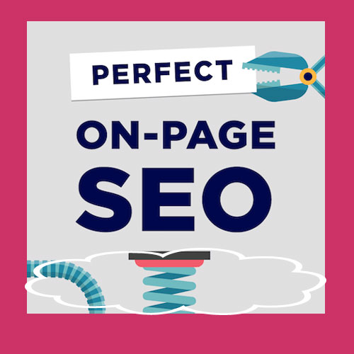 I will do On Page SEO Optimization for WP Website & Static Website