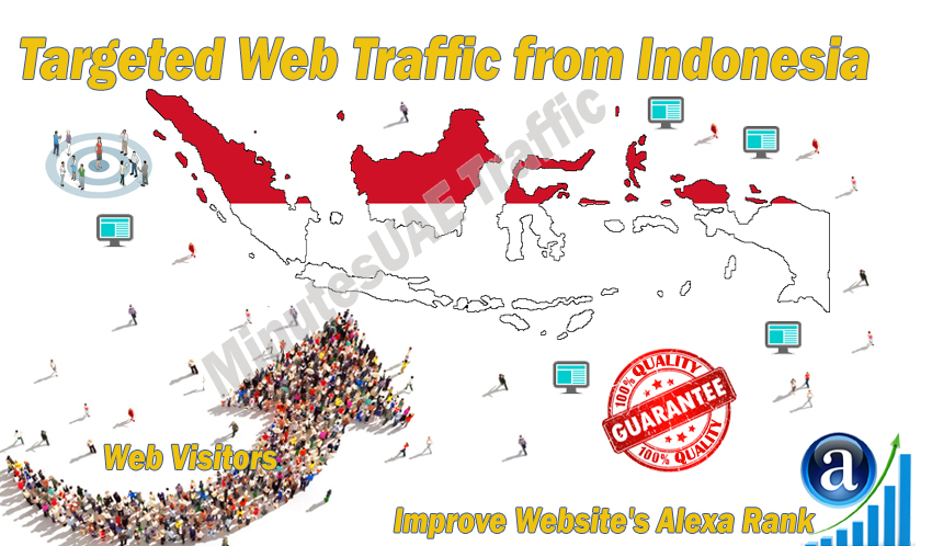 Indonesian web visitors real targeted Organic web traffic from Indonesia
