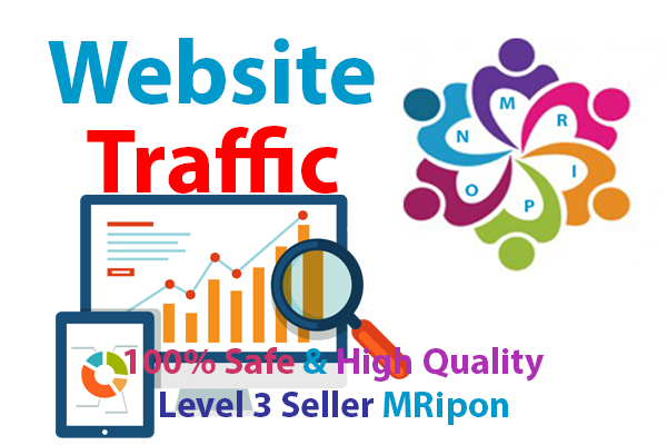 Get Organic Search Engine Website Traffic