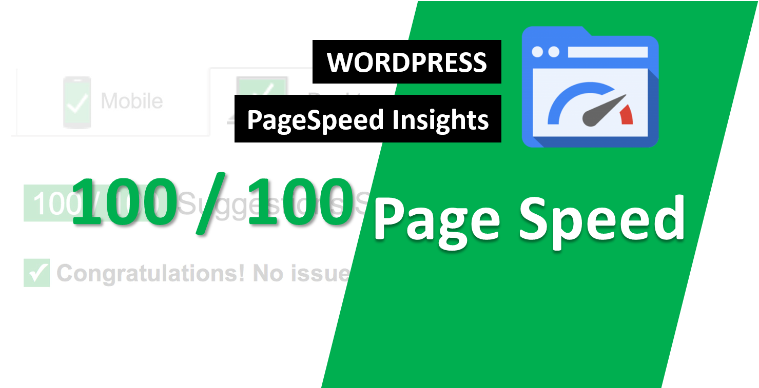 Google Page Speed Optimizer super fast