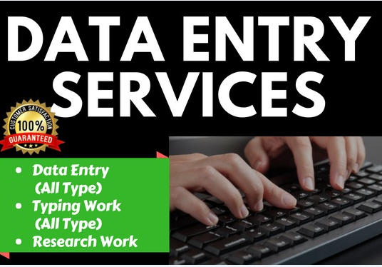 I will Do Perfect Excel Data Entry and Web Research