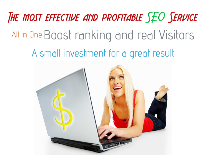 All in One Fast Ranking and hundreds of real Visitors,  1 Week SEO with Startpages