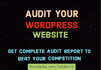I will audit your wordpress site and send complete report