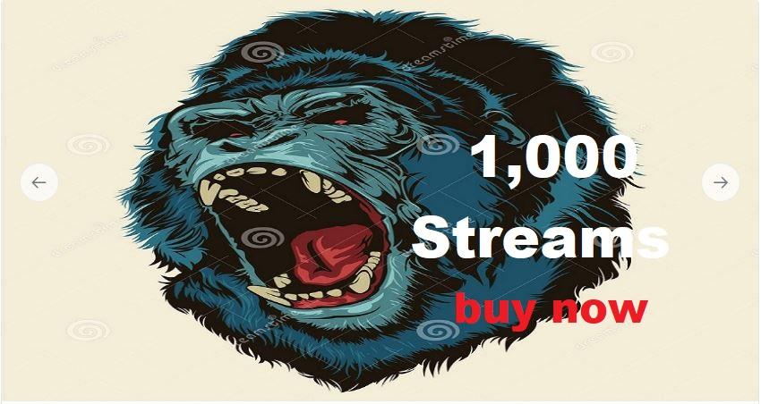 1,000 streams + 2,000 views for mixtape spinrilla