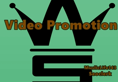 Video Promotion High Quality Traffic Visitor To Your Video