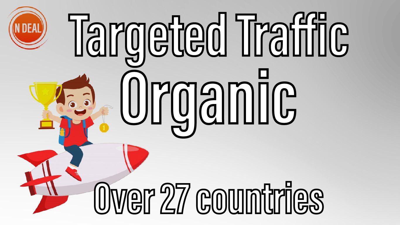 3000 Visitors Targeted Real and Organic Traffic