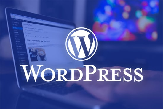 wordpress web develop with installing premuim theme and plugins for 5