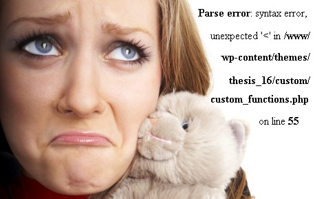 Edit or Customize and Fix Errors of wordpress website
